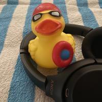 Kopfhörer zum Schwimmen: wasserdicht &  multifunktional